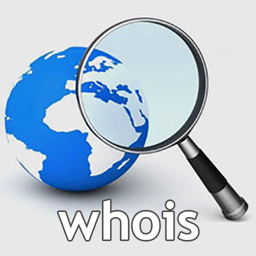 مفهوم حالتهای (status) مختلف whois دامنه چیست؟