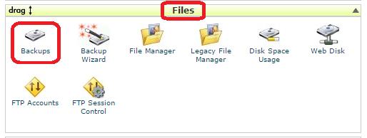 روش پشتیبان گیری از اطلاعات در Cpanel